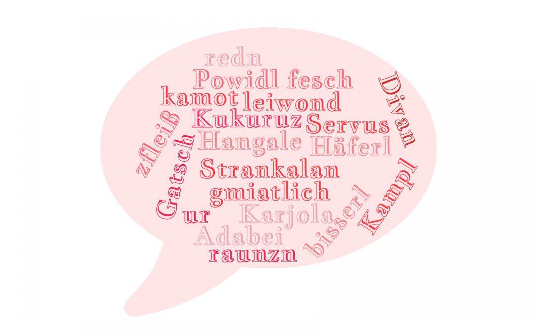"""""""I versteh di net"""" – Der Dialekt in der Kommunikationsbranche"""